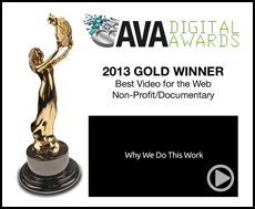 Ava digital awards 2013 why we do this work testimony